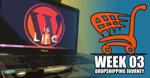 Week 03: Dropshipping Journey – The Fun Begins
